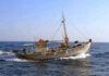 Βιντζότρατα στη θάλασσα