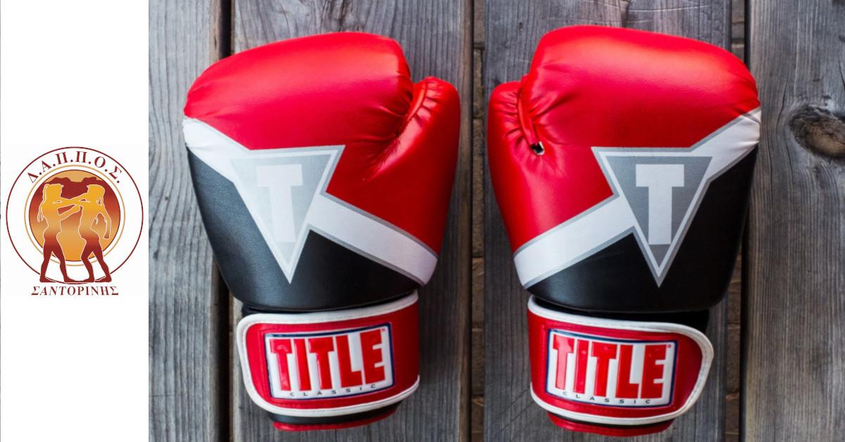 Τμήματα πυγμαχίας στον ΔΑΠΠΟΣ